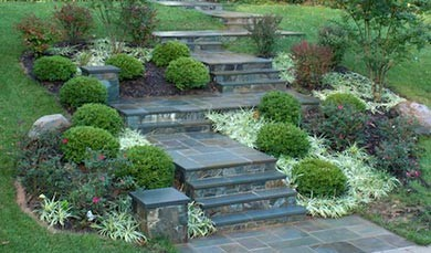 Full-Service Landscape Company Serving Ashburn