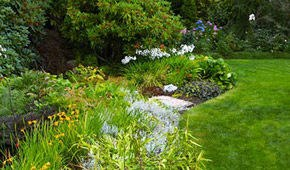 Landscape Design in VA