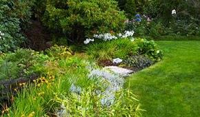 Landscape Design in VA