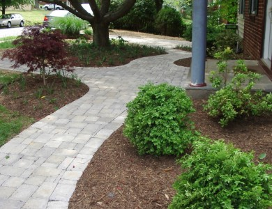 Paver walkway in Falls Church.