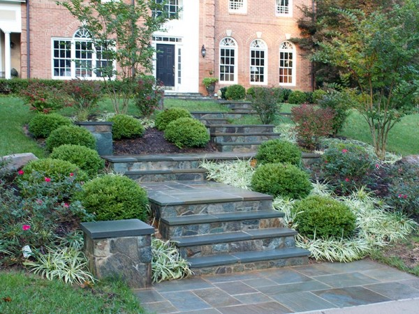 Front Yard Landscape Design & Home Sidewalk in Vienna, VA