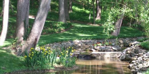 Natural stream in Mclean.