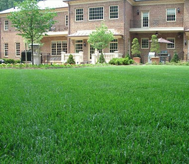 Lawn Care in Brambleton, Virginia