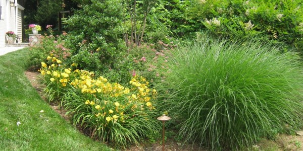 How to prepare your garden for winter winter garden maintenance northern virginia landscapers - Gardening works in october winter preparations ...