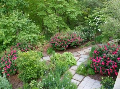 General Landscaping in Herndon VA