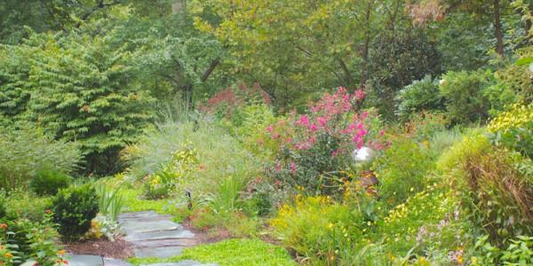 Landscape design in McLean Virginia
