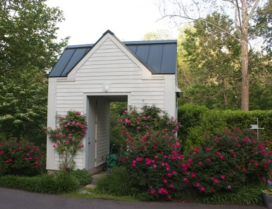 Shed with rose garden in McLean Virginia