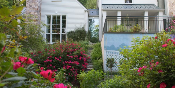 Don't Leave Your Landscaping Up to Luck – How to Choose a Landscape Company in Northern VA