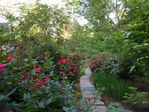 mclean-landscape-plants