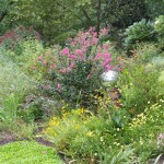 Recommended Fall Landscape Maintenance