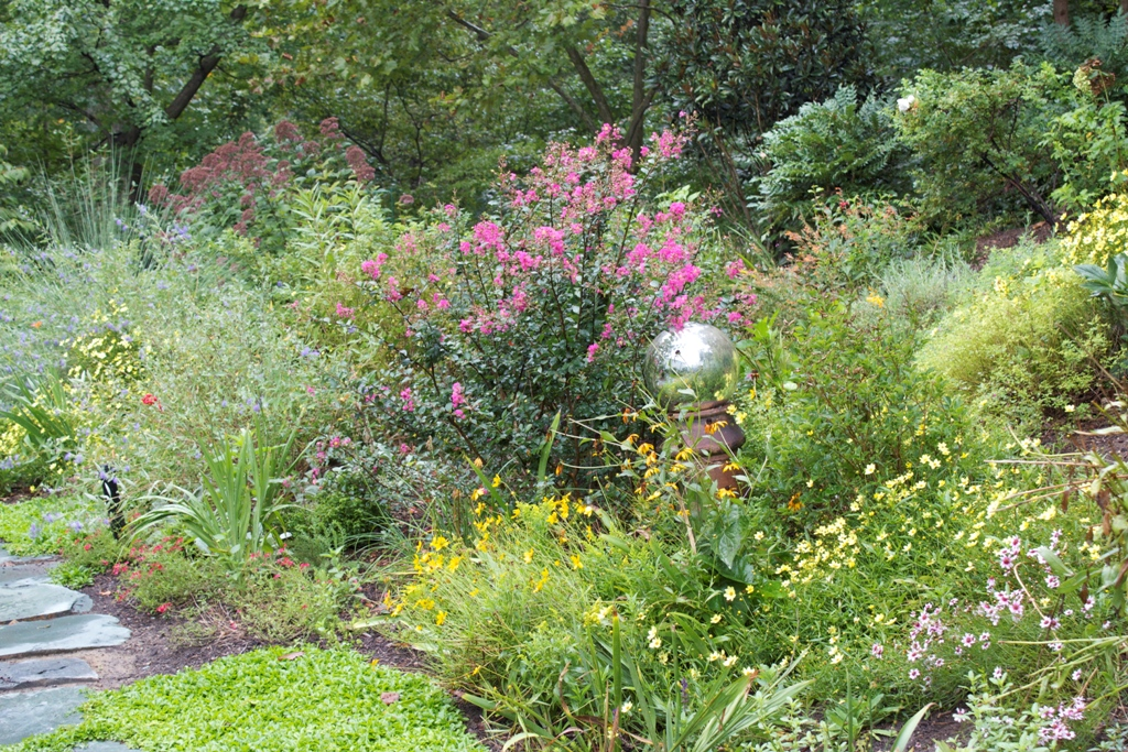 Native plants in northern va benefits of natural landscaping for Native plant garden designs