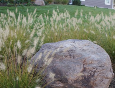 Landscape Boulder, McLean VA