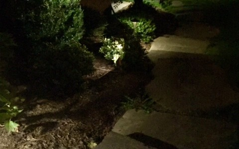 Professional landscape outdoor lighting illuminating a path with fixtures using flood, down and up lighting for a home in McLean, VA