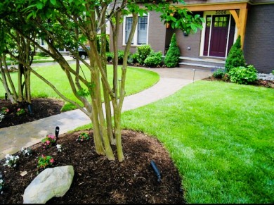 Full-Service Landscape Company Serving Reston