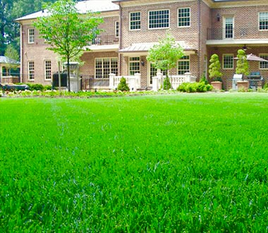 Landscape Maintenance in Chantilly VA