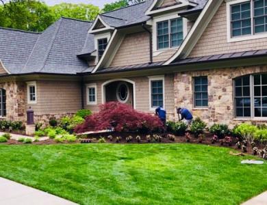 Landscape Maintenance in Arlington, VA