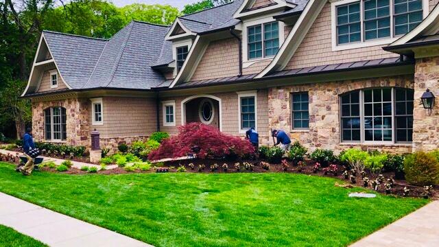 Lawn Care Maintenance in Arlington, VA